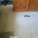 Bedroom-Carpet-Cleaning-San-Leandro