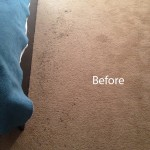 Bedroom-Carpet-Cleaning-San-Leandro-A