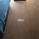 Bedroom-Carpet-Cleaning-San-Leandro-B