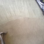 Carpet-Cleaning-San-Leandro