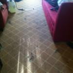 San-Leandro-Carpet-Clean-before
