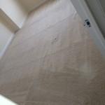San-Leandro-Carpet-Clean-room