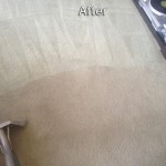 San-Leandro-Carpet-Cleaning-Company