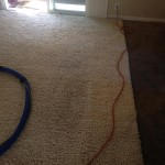 San-Leandro-Traffic-Area-carpet-cleaners