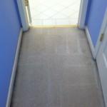 San-Leandro-Vomit-after-carpet