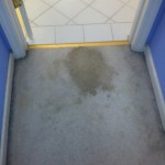 San-Leandro-Vomit-before-carpet