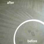 San-Leandro-Wine-Stain-Carpet-Cleaning