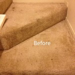 Stairs-Carpet-Cleaning-San-Leandro-A