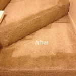 Stairs-Carpet-Cleaning-San-Leandro-B